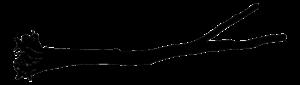 Logo Baumstamm Thomas Brouwers Antikholzmanufaktur Pähl Weilheim Fünfseenland Dießen am Ammersee