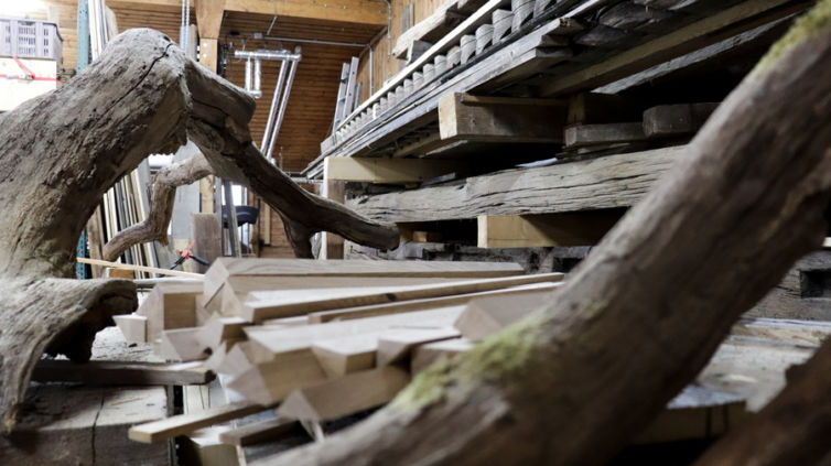Holz-Rohdiamanten 05